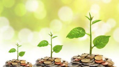 چالشهای تامین مالی سرمایه در گردش بنگاهها