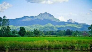 احیای صنعت گردشگری داخلی تایلند با بسته ۷۲۲ میلیون دلاری