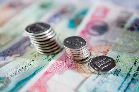صندوق توسعه ابوظبی بازپرداخت بدهی کشورهای درحال توسعه راتعلیق کرد