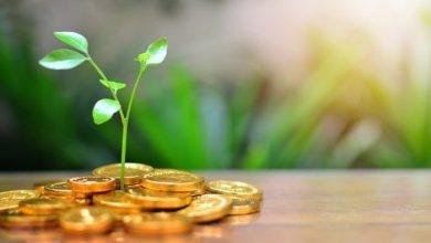 آینده درخشان استارتاپها با استفاده از صندوقهای سرمایهگذاری