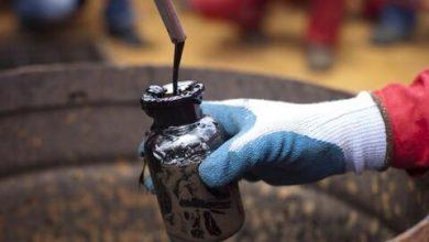 قیمت هر بشکه نفت به زیر ۴۲ دلار سقوط کرد
